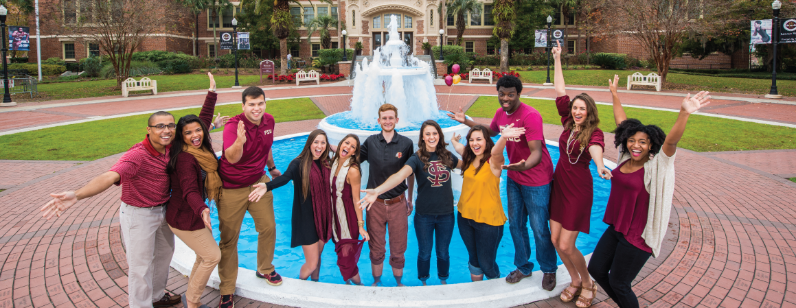 Garnet and Gold Scholar Engagement Areas